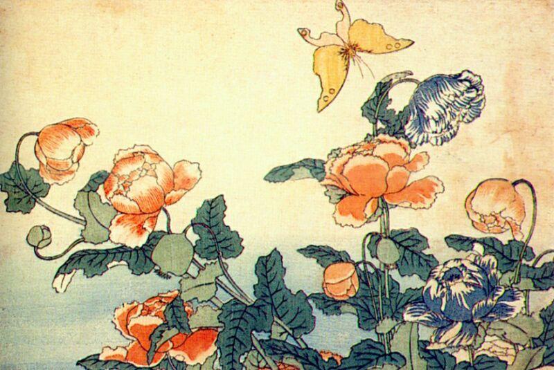 Hokusai ile ilgili görsel sonucu